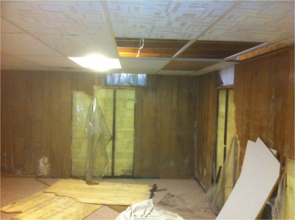 basement waterproofing renovation and mold remediation